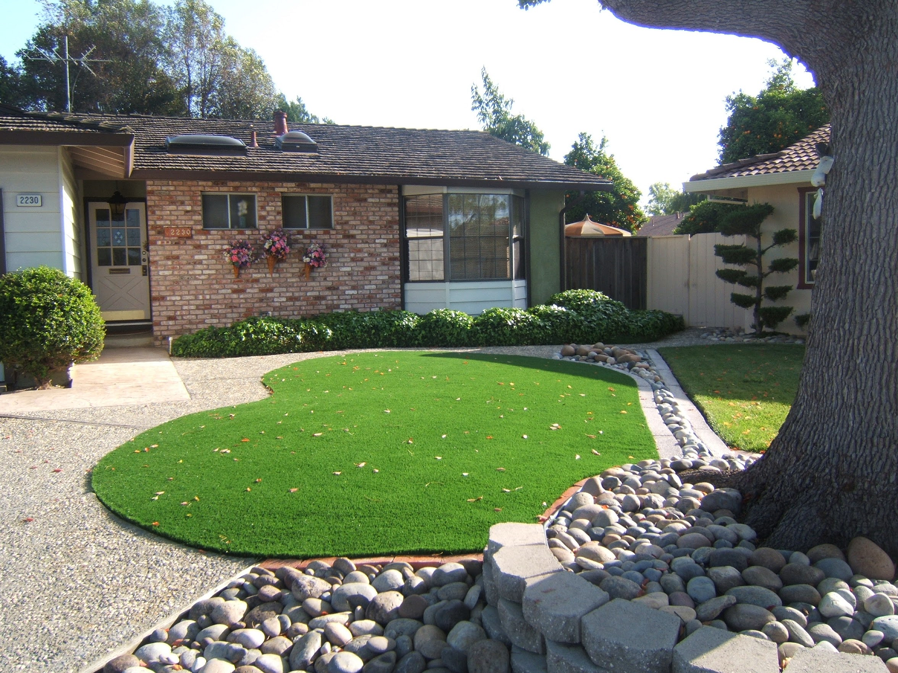 artificial turf installed in an Union City, California Lawn