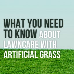 What To Know about Lawncare