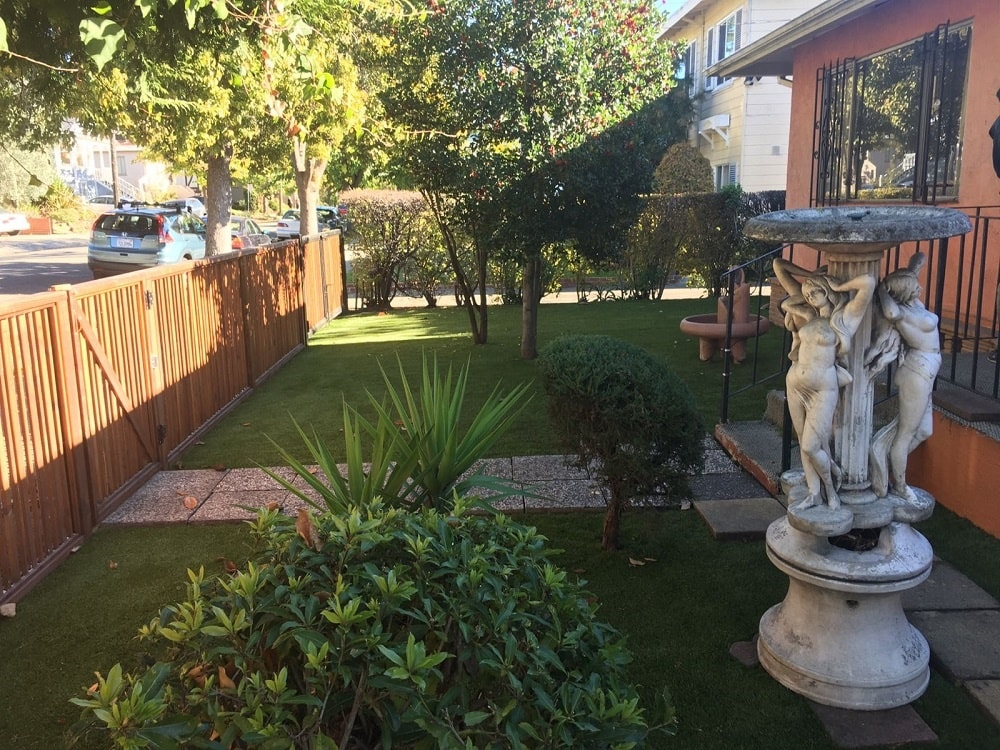 Berkeley, California Lawn with Artificial turf