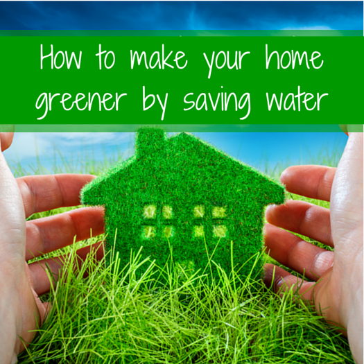How To Make Your Home Greener Infographic 1