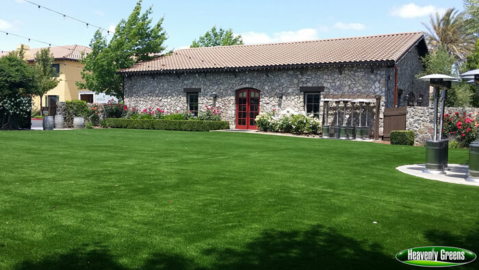 Common area with artificial turf
