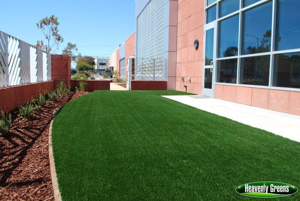 artificial grass for dog facilities