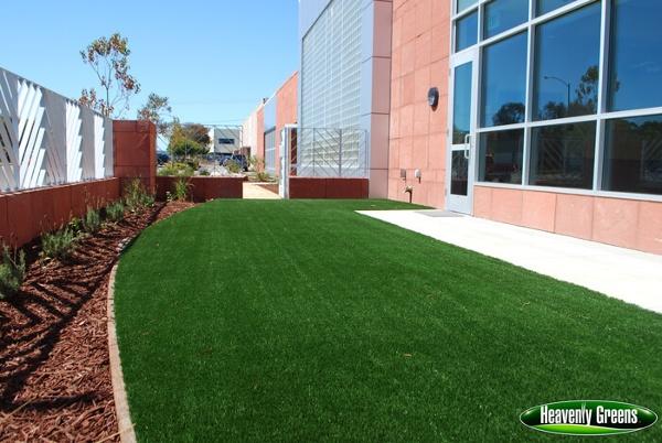 artificial grass for dog facilities