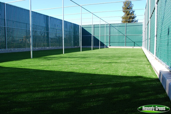 artificial grass and dog parks/facilities