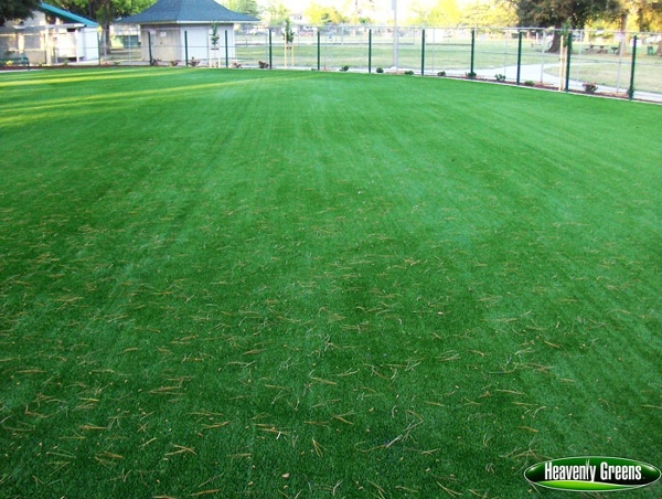 artificial grass for dogs at dog parks