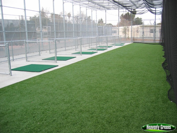 synthetic grass used in batting cages