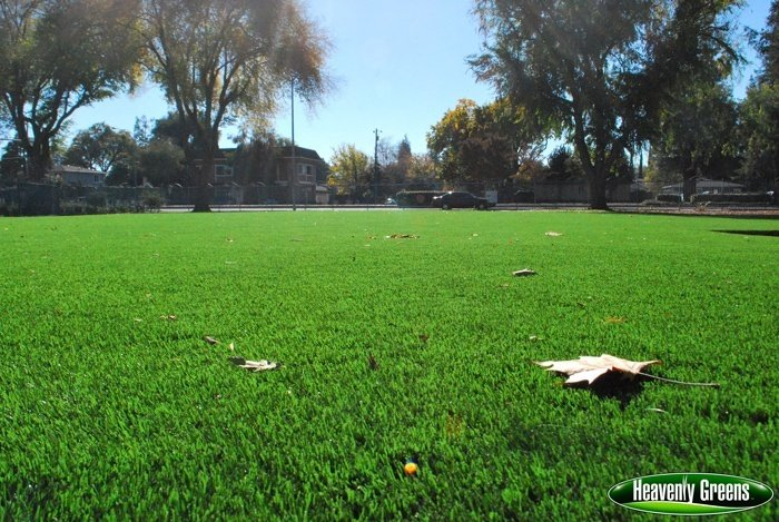 synthetic grass on school common area