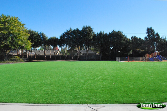 artificial turf on a school common area