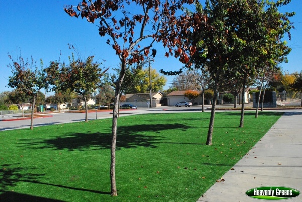 synthetic turf on college campus