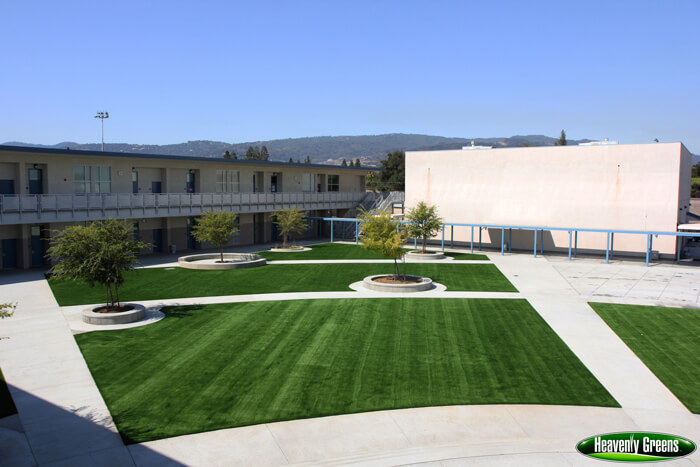 artificial grass on school common grounds
