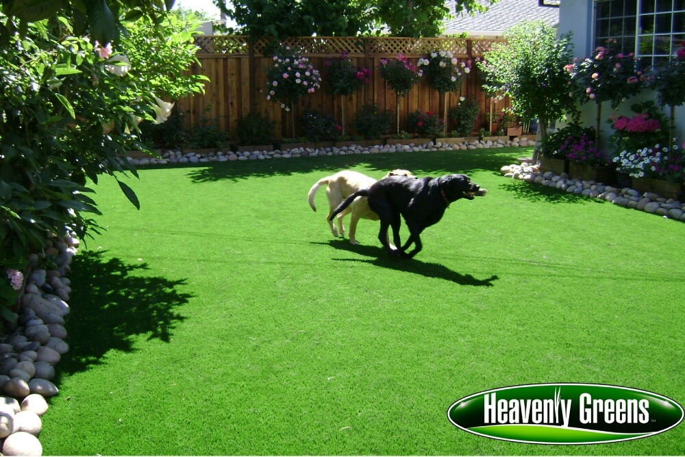 synthetic grass for dogs