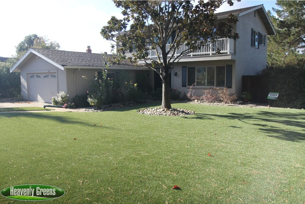synthetic grass in yard